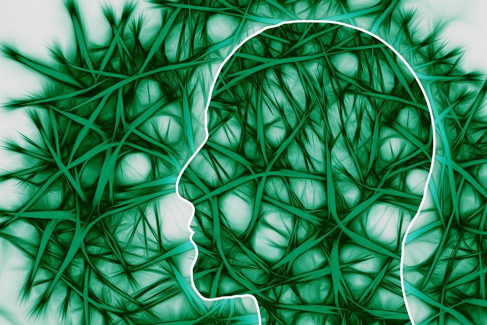 createyourownlives-neural-pattern
